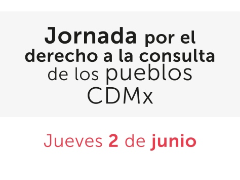 Jornada-Consulta_2jun15-10